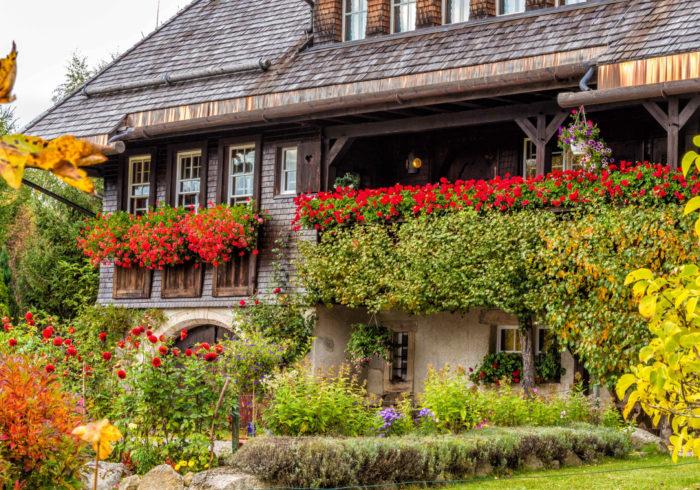 Museo de historia local Hüsli en una carrera de colores