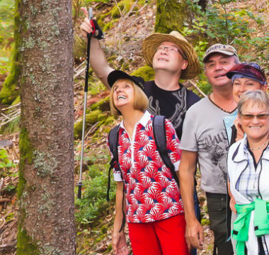 Wandergruppe Immerfroh auf Tour