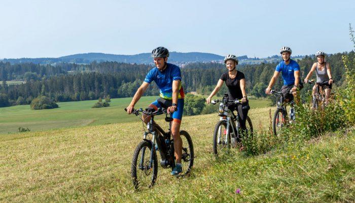 Tour en bicicleta electrónica